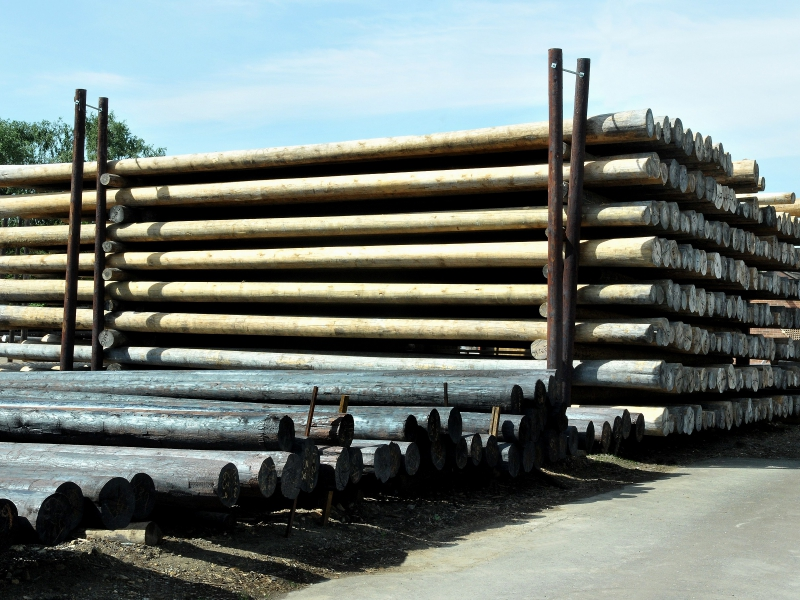 Pressure Treated Telegraph Poles